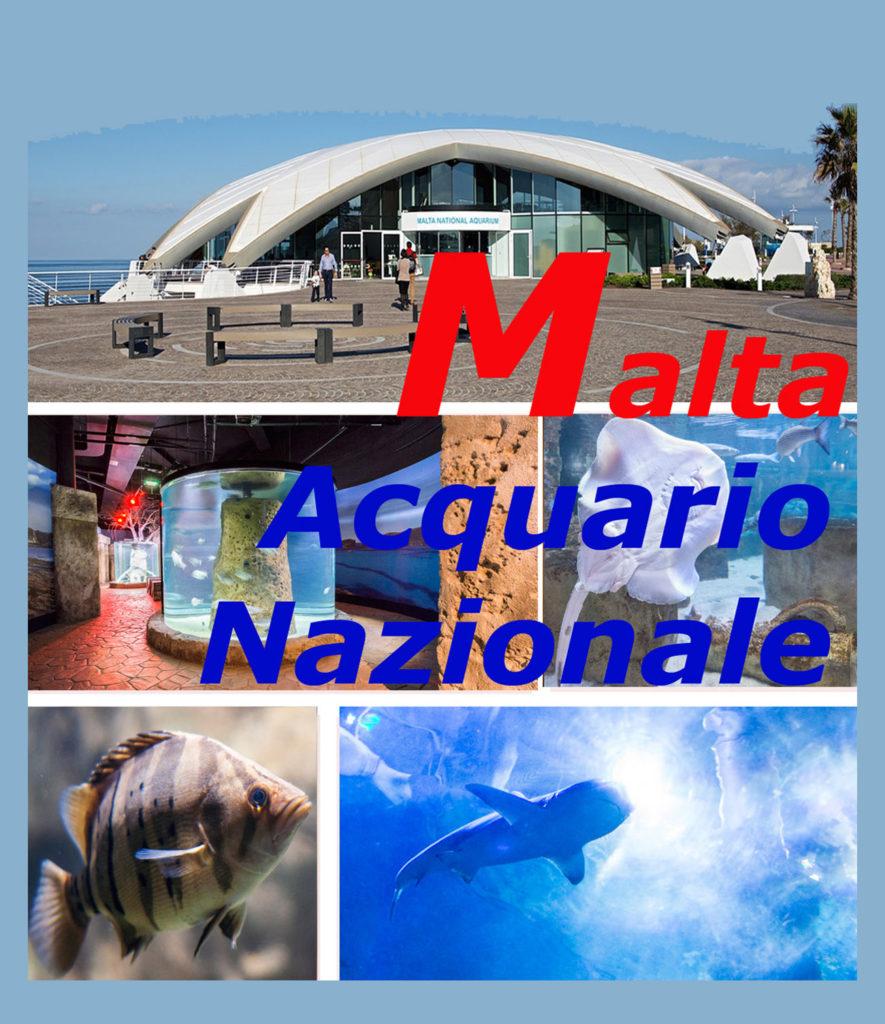Acquario Nazionale di Malta