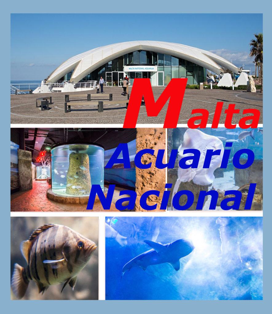 Acuario Nacional de Malta