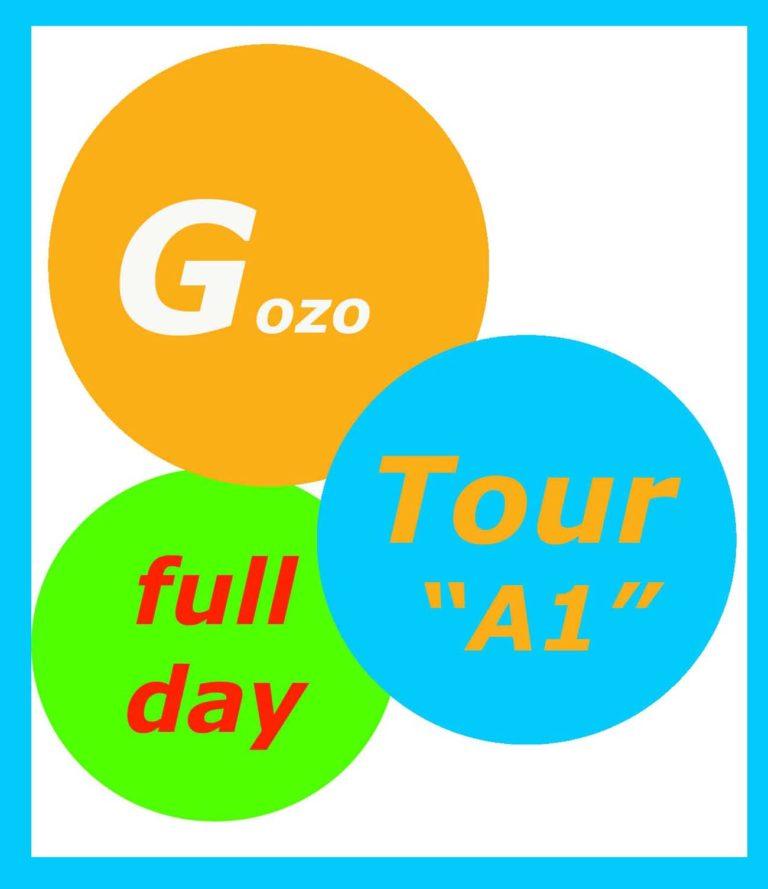 Tour of Gozo full day 2020